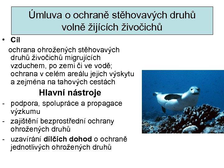 Úmluva o ochraně stěhovavých druhů volně žijících živočichů • Cíl ochrana ohrožených stěhovavých druhů