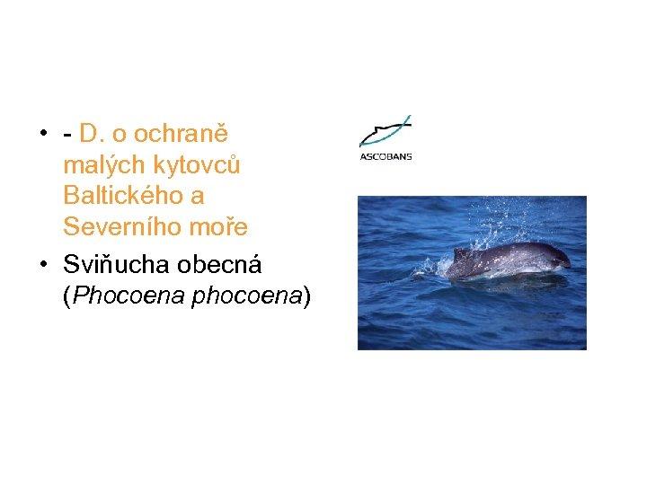 • - D. o ochraně malých kytovců Baltického a Severního moře • Sviňucha