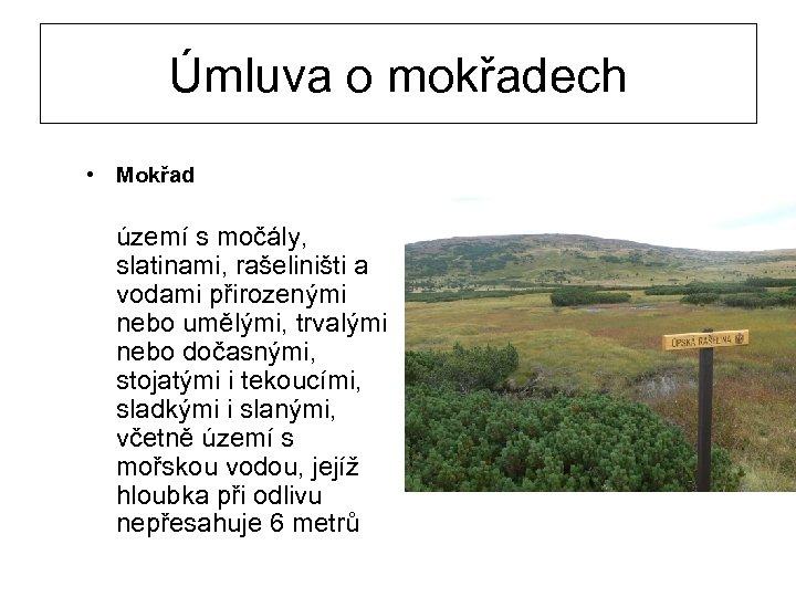 Úmluva o mokřadech • Mokřad území s močály, slatinami, rašeliništi a vodami přirozenými nebo