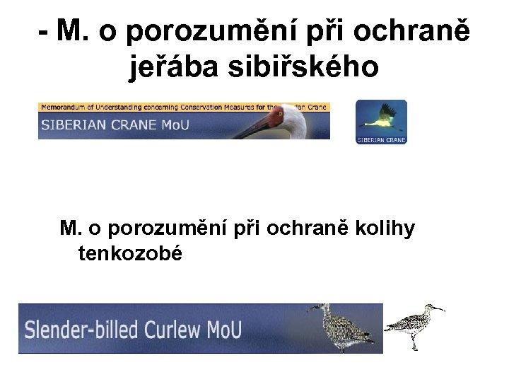 - M. o porozumění při ochraně jeřába sibiřského - M. o porozumění při ochraně