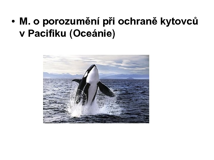• M. o porozumění při ochraně kytovců v Pacifiku (Oceánie)