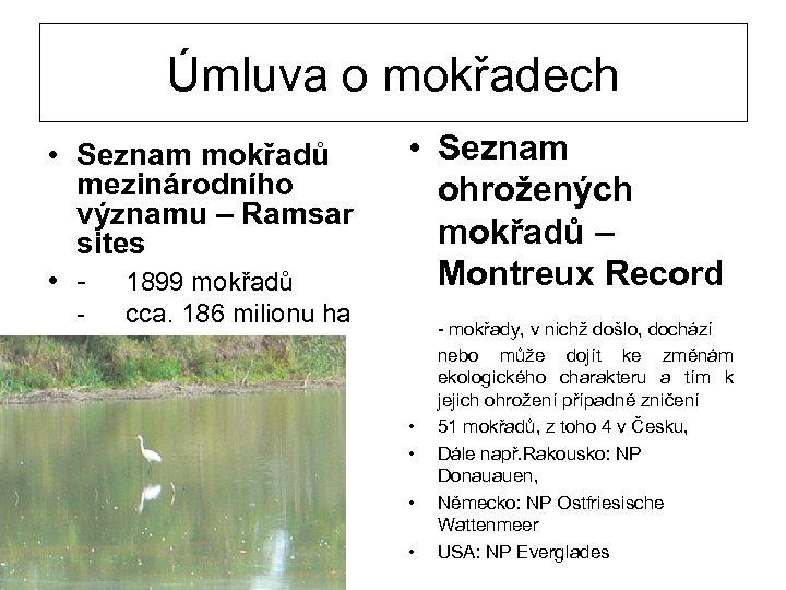 Úmluva o mokřadech • Seznam mokřadů mezinárodního významu – Ramsar sites • - 1899