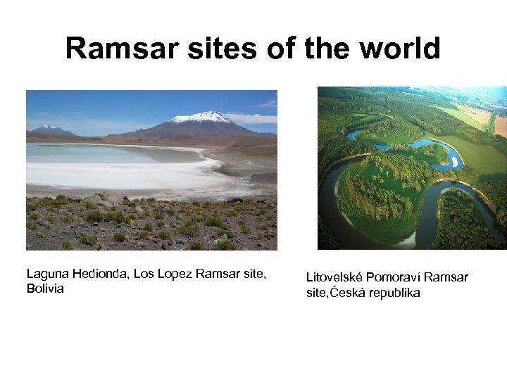 Ramsar sites of the world Laguna Hedionda, Los Lopez Ramsar site, Bolivia Litovelské Pomoraví