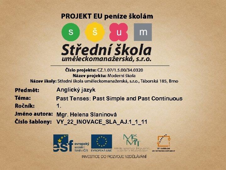 Anglický jazyk Past Tenses: Past Simple and Past Continuous 1. Mgr. Helena Slaninová VY_22_INOVACE_SLA_AJ.