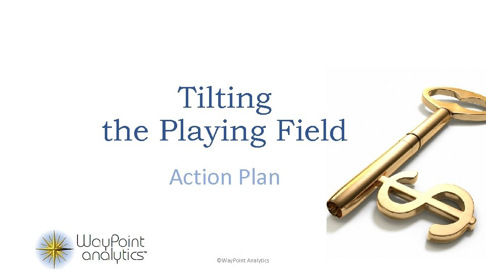 Tilting the Playing Field Action Plan ©Way. Point Analytics