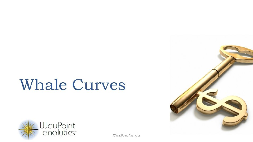 Whale Curves ©Way. Point Analytics