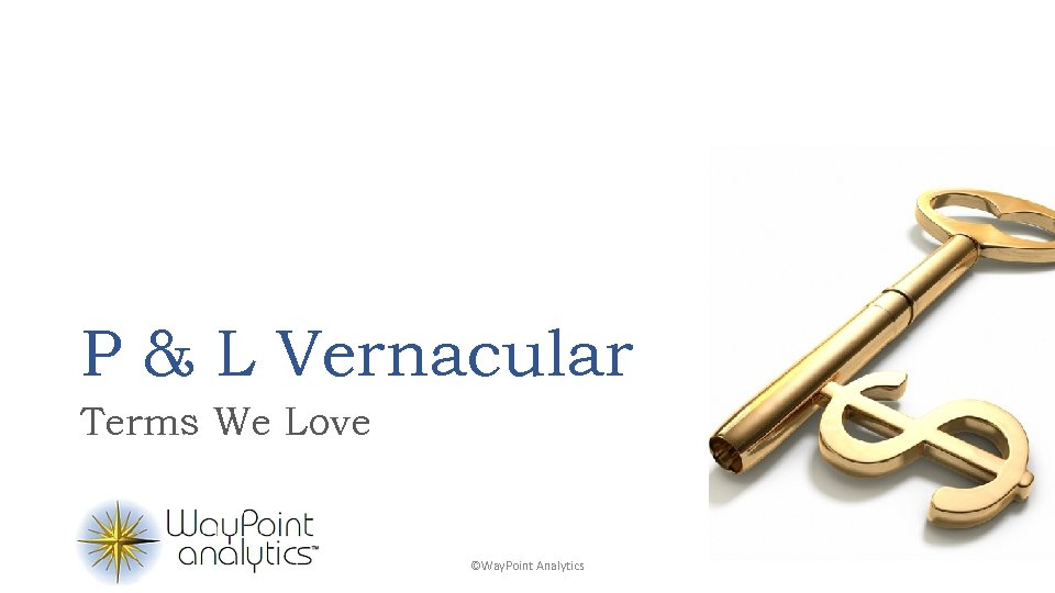 P & L Vernacular Terms We Love ©Way. Point Analytics