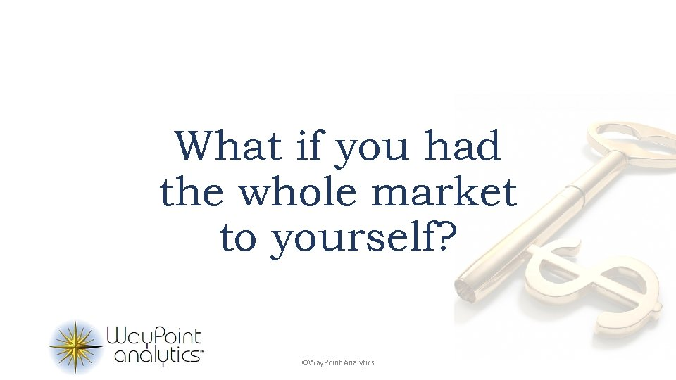 What if you had the whole market to yourself? ©Way. Point Analytics