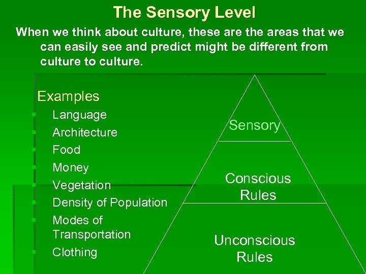 The Sensory Level When we think about culture, these are the areas that we