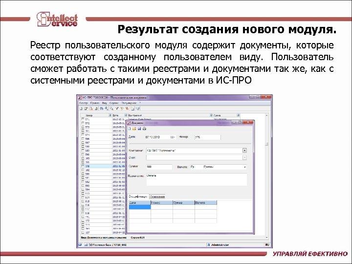 Результат создания нового модуля. Реестр пользовательского модуля содержит документы, которые соответствуют созданному пользователем виду.