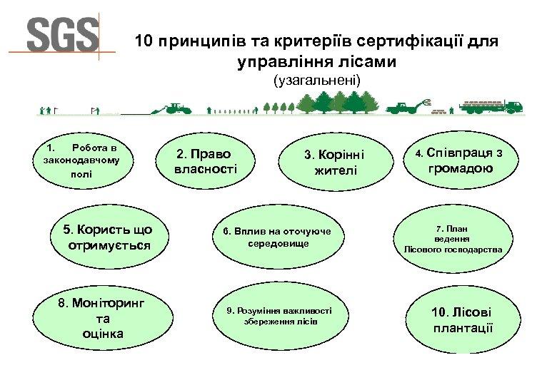 10 принципів та критеріїв сертифікації для управління лісами (узагальнені) 1. Робота в законодавчому полі