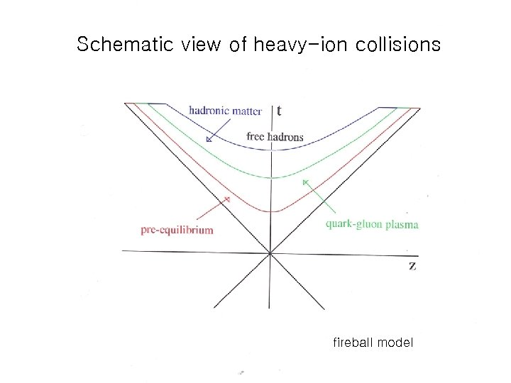 Schematic view of heavy-ion collisions fireball model
