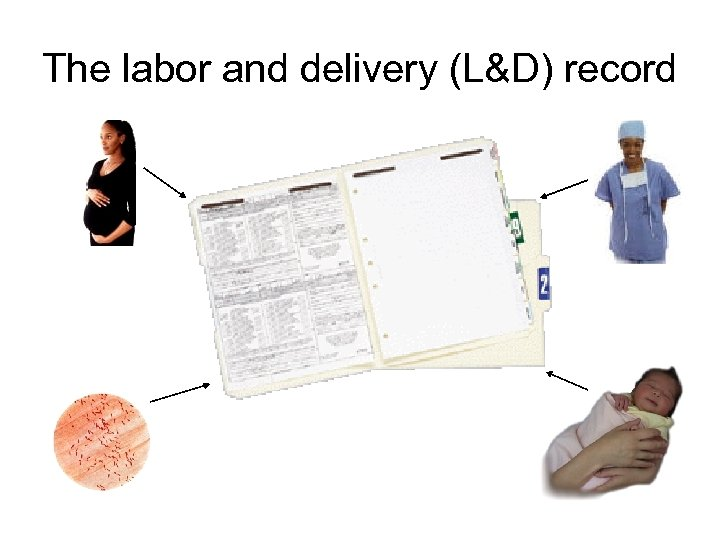 The labor and delivery (L&D) record