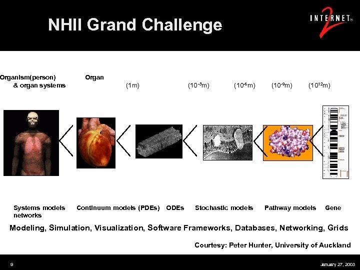 NHII Grand Challenge Organism(person) Organ & organ systems (1 m) (10 -3 m) (10