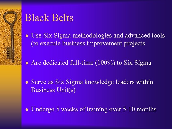 Black Belts ¨ Use Six Sigma methodologies and advanced tools (to execute business improvement