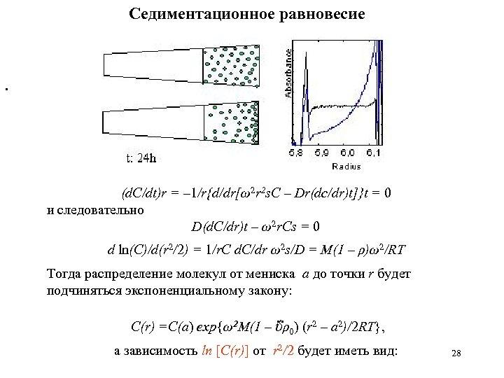 Седиментационное равновесие . (d. C/dt)r = – 1/r{d/dr[ω2 r 2 s. C – Dr(dc/dr)t]}t