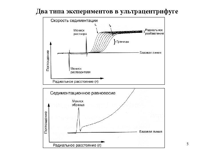 Два типа экспериментов в ультрацентрифуге 5
