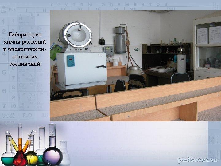 Лаборатория химии растений и биологическиактивных соединений