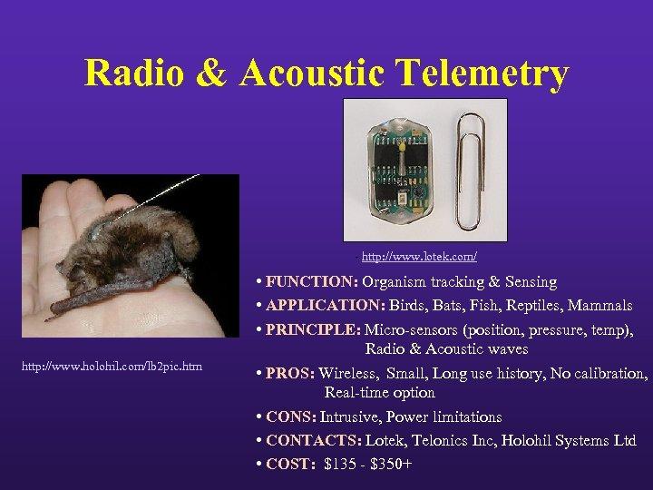 Radio & Acoustic Telemetry - http: //www. lotek. com/ http: //www. holohil. com/lb 2