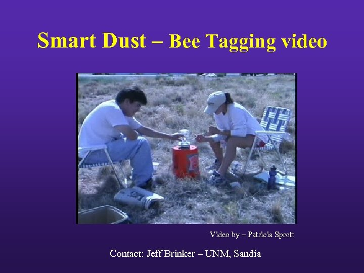 Smart Dust – Bee Tagging video Video by – Patricia Sprott Contact: Jeff Brinker