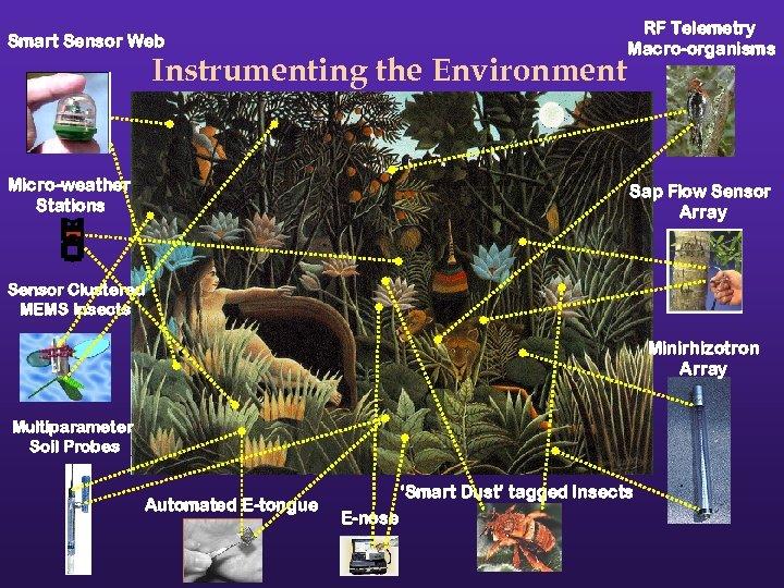 Smart Sensor Web RF Telemetry Macro-organisms Micro-weather Stations Sap Flow Sensor Array Instrumenting the