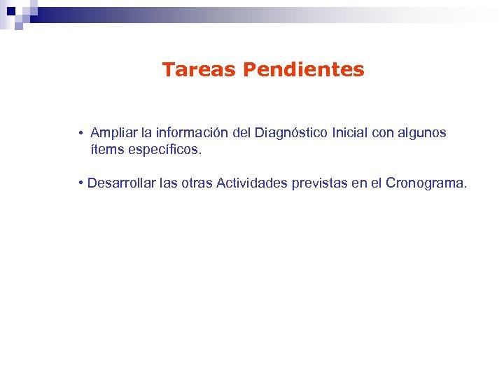 Tareas Pendientes • Ampliar la información del Diagnóstico Inicial con algunos ítems específicos. •