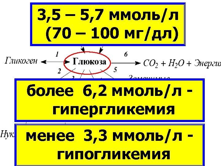 3, 5 – 5, 7 ммоль/л (70 – 100 мг/дл) КЛЕТОЧНЫЙ МЕТАБОЛИЗМ более 6,