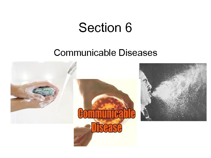 Section 6 Communicable Diseases