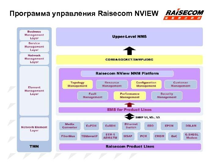 Программа управления Raisecom NVIEW