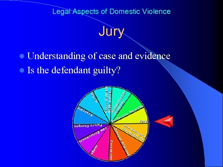 Legal Aspects of Domestic Violence Jury l Understanding of case and evidence l Is