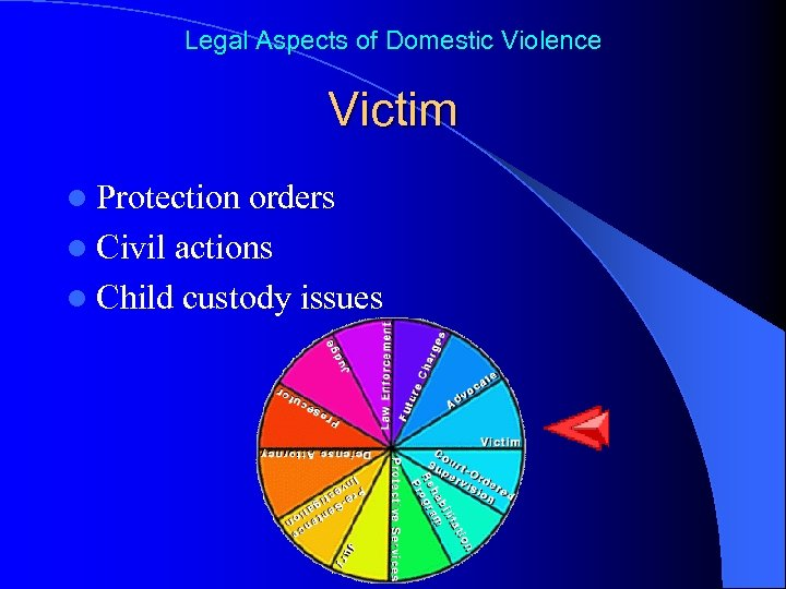 Legal Aspects of Domestic Violence Victim l Protection orders l Civil actions l Child