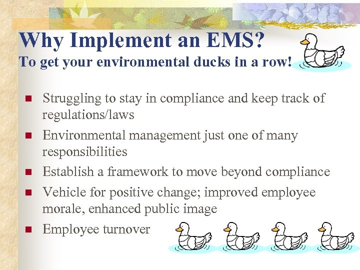 Why Implement an EMS? To get your environmental ducks in a row! n n
