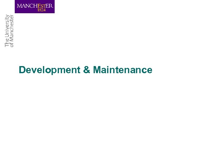 Development & Maintenance