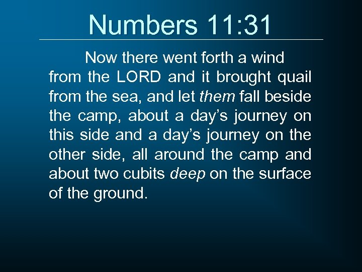 Numbers 11: 31 Now there went forth a wind from the LORD and it