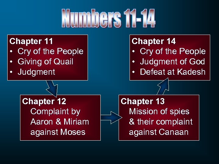 Chapter 11 • Cry of the People • Giving of Quail • Judgment Chapter