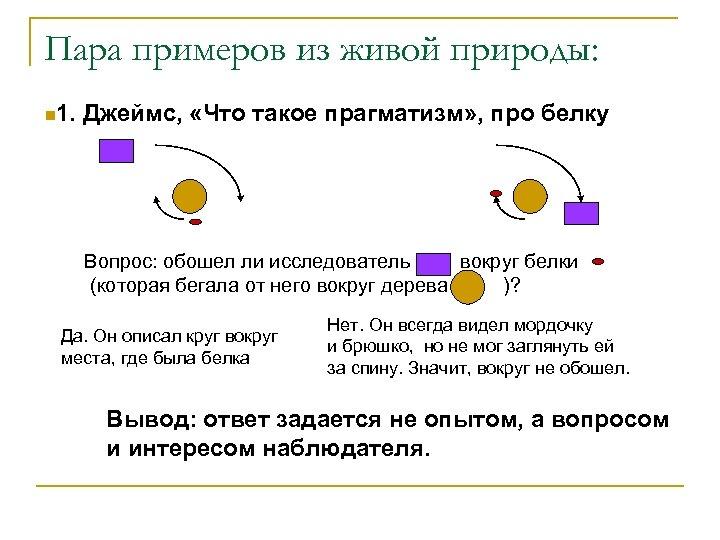 Пара примеров из живой природы: n 1. Джеймс, «Что такое прагматизм» , про белку