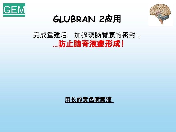 GEM GLUBRAN 2应用 完成重建后,加强硬脑脊膜的密封, …防止脑脊液瘘形成 ! 用长的黄色喷雾液