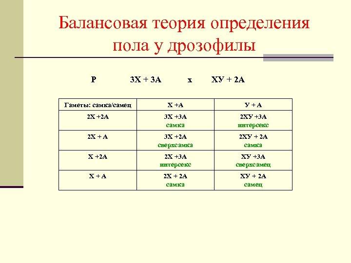 Балансовая теория определения пола у дрозофилы Р 3 X + 3 A х ХУ