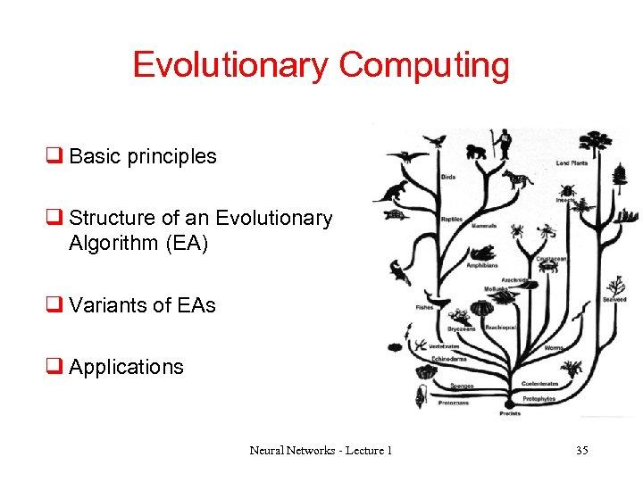 Evolutionary Computing q Basic principles q Structure of an Evolutionary Algorithm (EA) q Variants