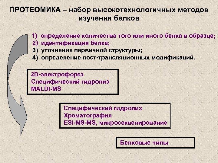 ПРОТЕОМИКА – набор высокотехнологичных методов изучения белков 1) 2) 3) 4) определение количества того