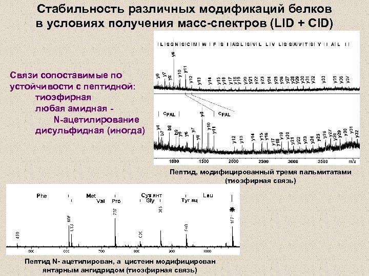 Стабильность различных модификаций белков в условиях получения масс-спектров (LID + CID) Связи сопоставимые по