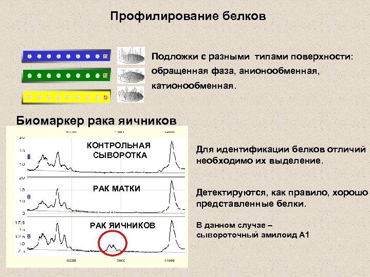 Профилирование белков Подложки с разными типами поверхности: обращенная фаза, анионообменная, катионообменная. Биомаркер рака яичников