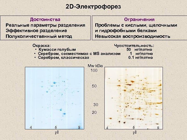 2 D-Электрофорез Достоинства Реальные параметры разделения Эффективное разделение Полуколичественный метод Ограничения Проблемы с кислыми,