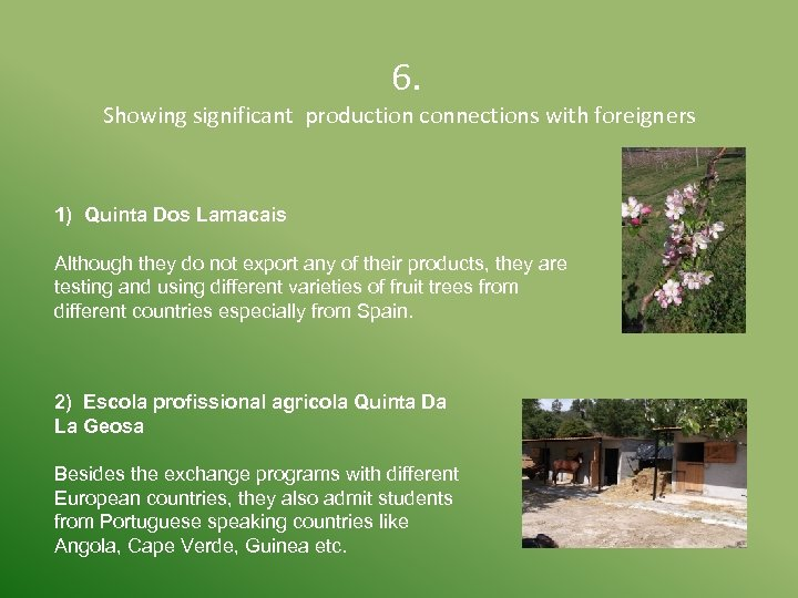 6. Showing significant production connections with foreigners 1) Quinta Dos Lamacais Although they