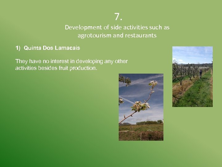 7. Development of side activities such as agrotourism and restaurants 1) Quinta Dos