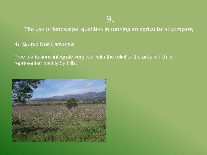 9. The use of landscape qualities in running an agricultural company 1) Quinta
