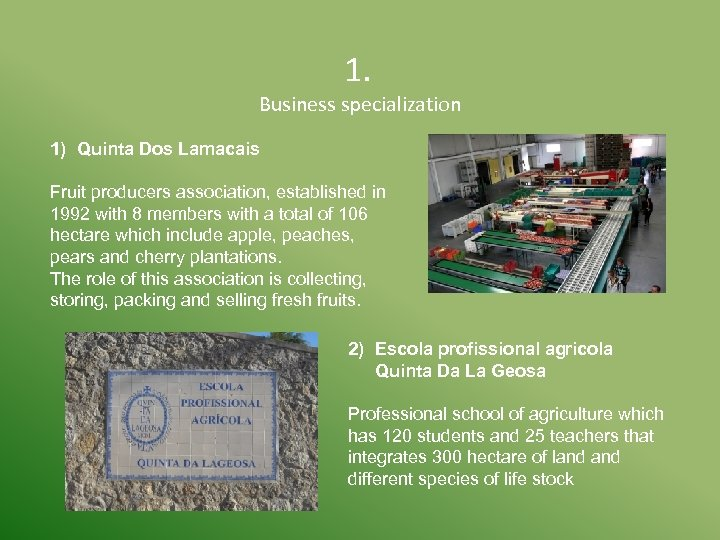 1. Business specialization 1) Quinta Dos Lamacais Fruit producers association, established in 1992