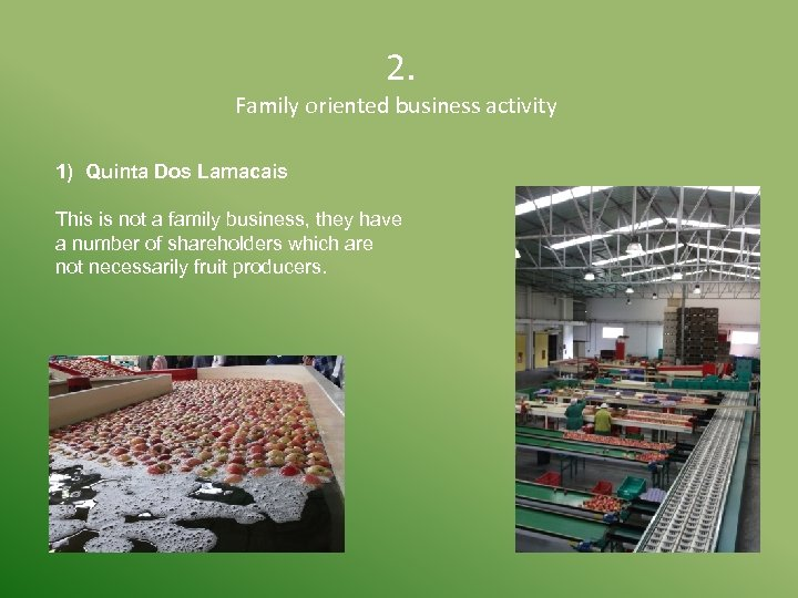 2. Family oriented business activity 1) Quinta Dos Lamacais This is not a