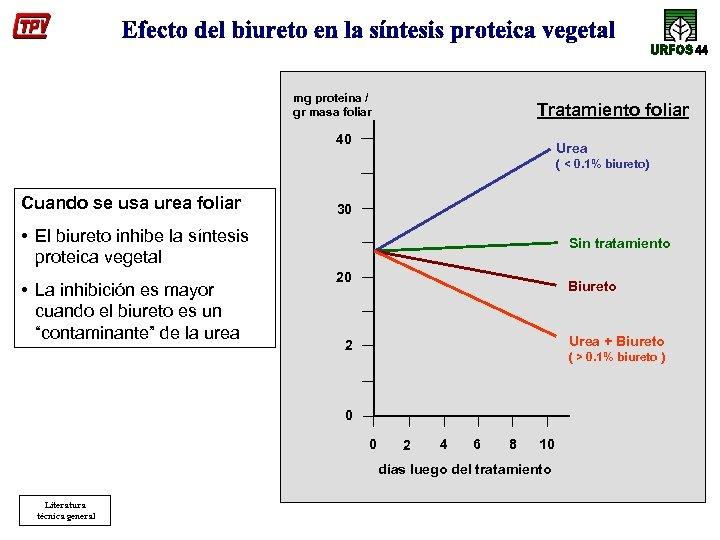 mg proteína / gr masa foliar Tratamiento foliar 40 Urea ( < 0. 1%