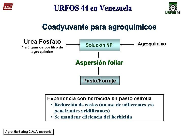 Urea Fosfato 1 a 5 gramos por litro de agroquímico Solución NP Agroquímico Pasto/Forraje